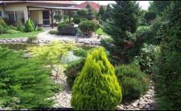 Široký sortiment okrasných stromků najdete v Zahradním centru Zahradnictví Brno-Kresa