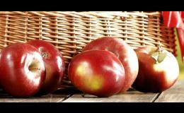 Prodej ovoce - jablka, švestky, hrušky a meruňky