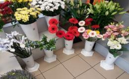 Čerstvé řezané a hrnkové květiny pořídíte v květinářství Ivana Slavovová Prostějov