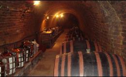Degustace vín v Malovaném vinném sklepě u Kraví hory