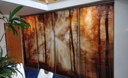 Interiérové skleněné dveře se špičkovou grafikou