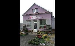 Květinářství v Prostějově - hrnkové, řezané květiny - prodej