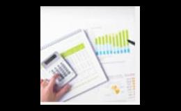 Daňová optimalizace, zastupování před správcem daně