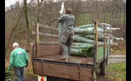 Stromkobraní - řezání stromků pro velkoobchod Střítež nad Bečvou