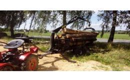 Lesnická činnost