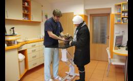 Veterinární vyšetření
