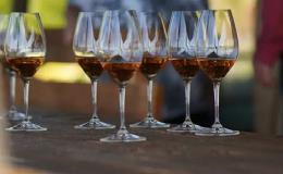 Školení, konference s degustací vína jižní Morava