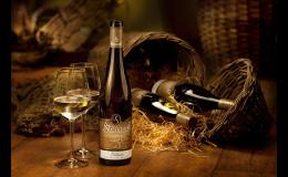 Vinárna a vinotéka v Mutěnicích - moravská vína