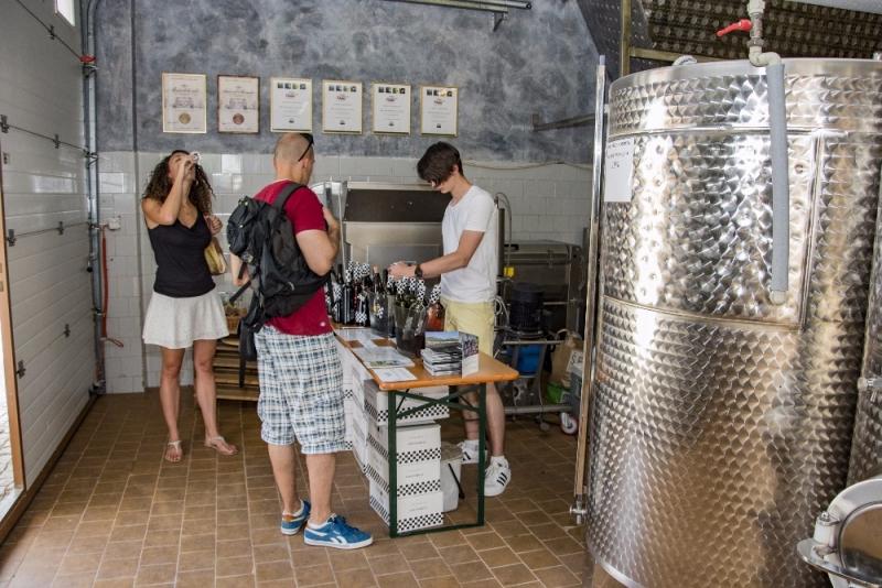 Degustace vín s odborným výkladem a prohlídkou sklepa