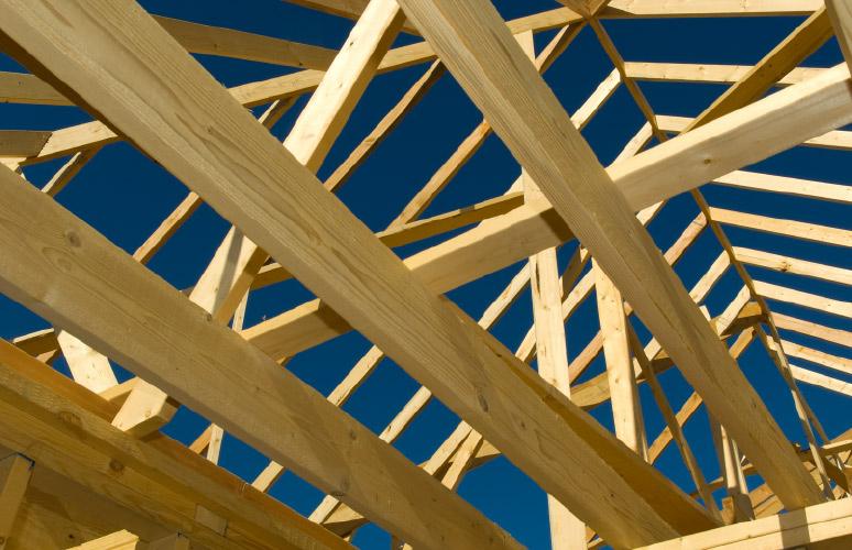 Bochemit - preventivní ochrana dřeva proti škůdcům, houbám a plísním