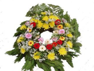 Mezinárodní převozy zesnulých pohřebními vozy, letecky