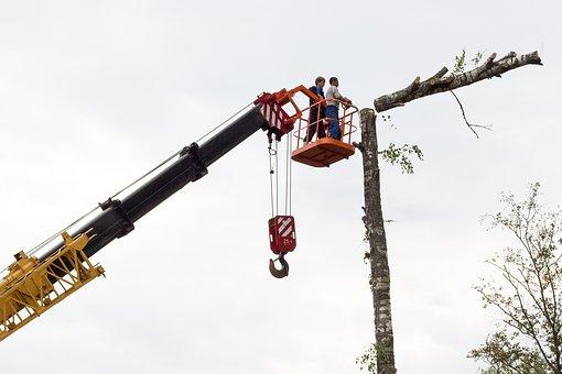 Rizikové kácení stromů pomocí plošiny či jeřábu
