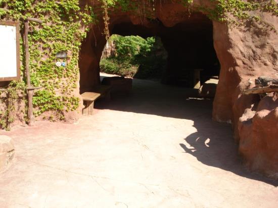 Artbeton v prostorách zoologické zahrady