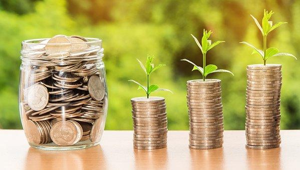 Daně veřejně prospěšných poplatníků podle zákona o dani z příjmů