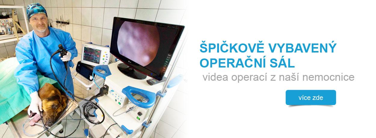 Moderní lékařské přístroje, operační sál, veterinární medicína