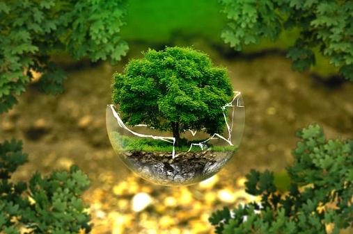 EIA  proces posuzování vlivů na životní prostředí
