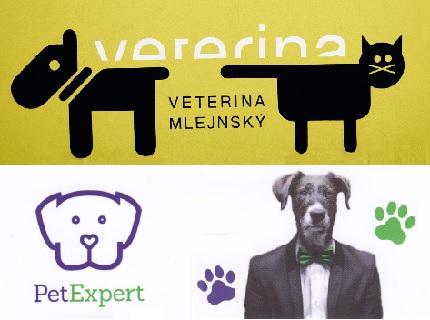 Výhody zdravotního pojištění PetExpert pro psy a kočky