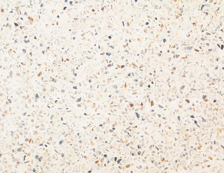 Pokládka speciálních litých terrazzo podlah