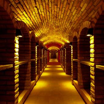 Lotrinského sklepy, vinařská turistika na jižní Moravě