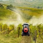 Stroje pro chemickou ochranu vinic - SYNPRO, s.r.o.