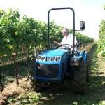 Malotraktory do vinic a sadů