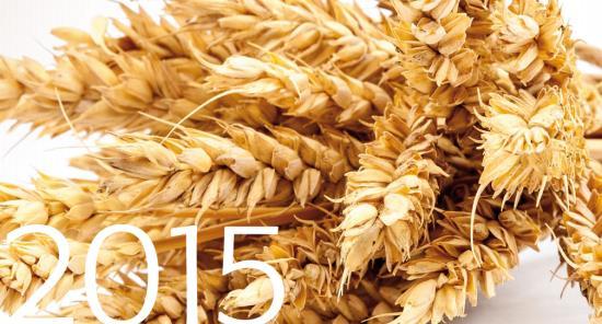 Prodej osiv zajišťuje firma VP AGRO, spol. s r.o.