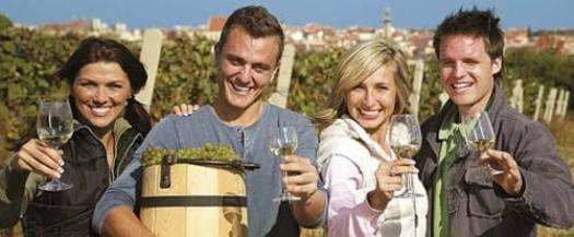 Vinařská turistika po vinných sklepech jižní Moravy