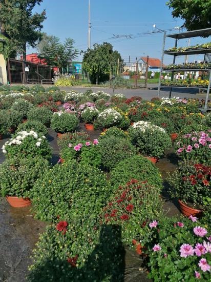 RAIDA-GARDENCENTRUM s.r.o. Opava - zahradní centrum