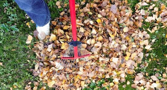 Hrabání listí v rámci údržby zahrad