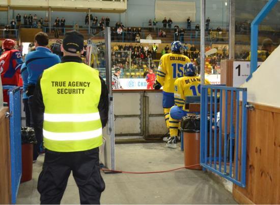 TRUE AGENCY SECURITY s.r.o. zajistí ochranu osob na sportovních akcích