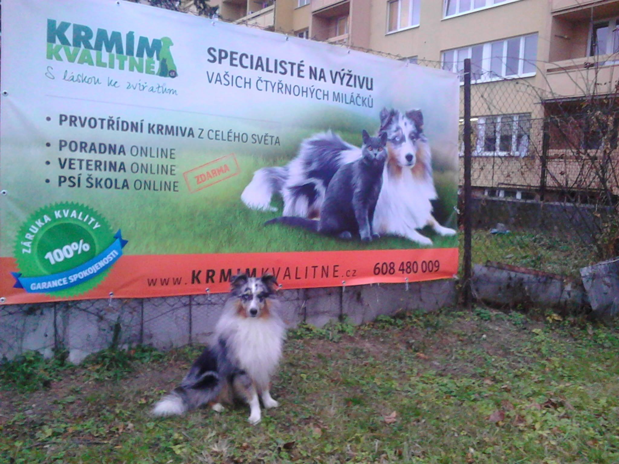 Ekonomický reklamní banner, ŽÍDEK tisk s.r.o.