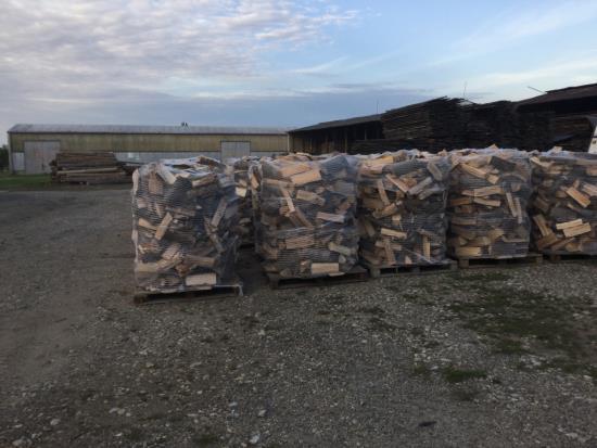 Měkké i tvrdé palivové dřevo, ekologický a levný způsob vytápění