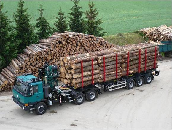 Základem europalet od společnosti Pila Benda s.r.o. je kvalitní dřevo