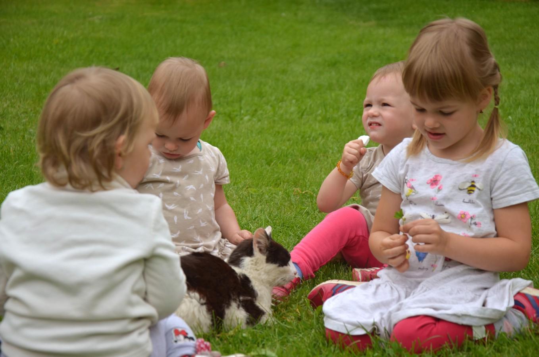 Ubytování pro rodiny s dětmi, Slavonice, jižní Čechy