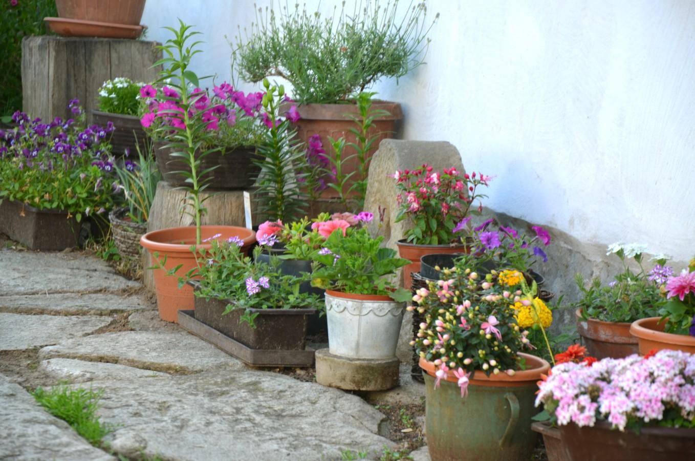 Příjemné ubytování v selském stavení, dvůr, zahrada, Slavonice