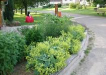 Ukázková přírodní zahrada Mutišov, projekt Přírodní zahrady bez hranic