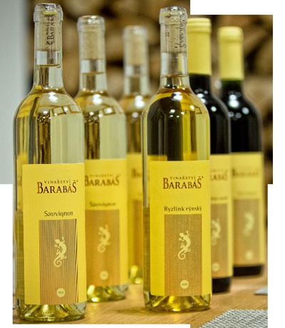 Ochutnávky vín s občerstvením ve Vinařství Barabáš na Znojemsku