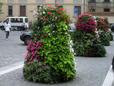 květinový městský mobiliář, poradenství, návrhy, realizace - FLORAVIL Znojmo