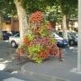 Květinové sloupy, pyramidy, květinová výzdoba na fasádách - FLORAVIL