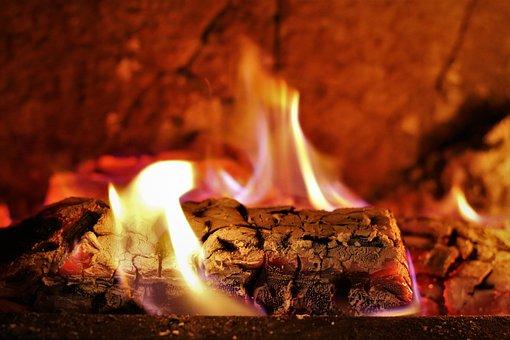 Palivové dřevo z tvrdých a měkkých dřevin