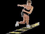Sportovní vybavení školních tělocvičen – dopadové plochy, žíněnky, míče
