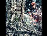 Lesní technika