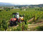 Stroje a technologie pro práce ve vinohradu, opěrné konstrukce do vinic