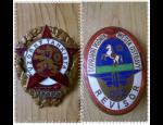 Výkup sběratelských předmětů – starší vojenská výstroj, odznaky, dekorace, hračky