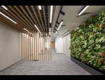 Designové interiérové prvky ze dřeva a skla, dřevěné mříže, příčky, obklady, podhledy