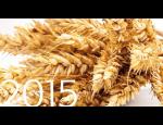 Distribuce osiv, pšenice, žito, ječmen, prodej chemických přípravků proti nákazám a parazitům.