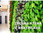 Hydroponie � modern� technologie p�stov�n� okrasn�ch rostlin v interi�ru
