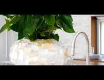 Nádoby a obaly na květináče pro pěstování hydroponických rostlin