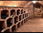 Posezení ve vinném sklípku s degustací vína a možností ubytování