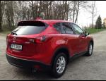 Bezplatná výměna autoskel z pojištění, opravy prasklin čelních skel vozidel